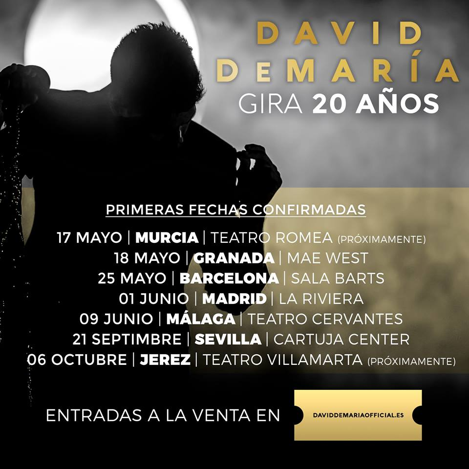 gira-20-años-david-demaria